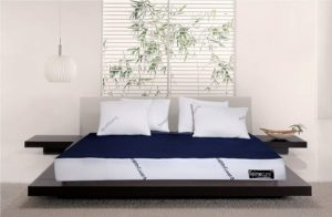 Spinecure Spine Opedic Mattress